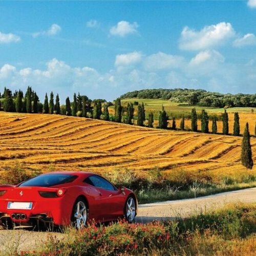 red car in field